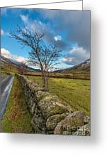 Road Less Travelled Greeting Card