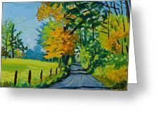 Road Through Barrenridge Greeting Card