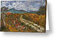 Road Through Colored Meadows Greeting Card