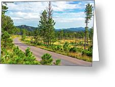 Road Through Custer State Park Greeting Card