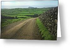 Road Through The Pastrues Of Terceira  Greeting Card by Kelly Hazel