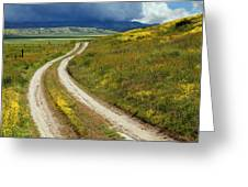 Road Through The Wildflowers Greeting Card