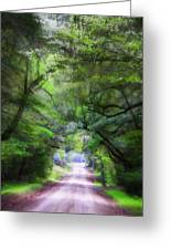 Road To Dreams Greeting Card by Jill Tennison