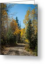Road To Fall Colors Greeting Card