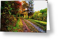 Road To My Farm Greeting Card by Terry  Wiley