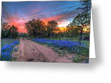 Road To Sunset Greeting Card