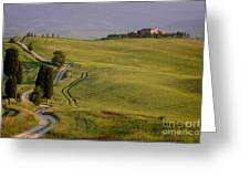 Road To Terrapille In Tuscany Greeting Card