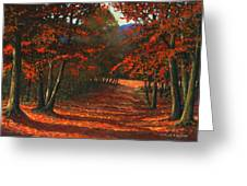Road To The Clearing Greeting Card