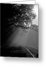Road With Early Morning Fog Greeting Card