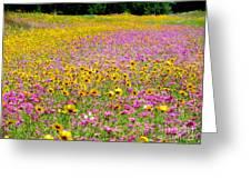 Roadside Flower Garden Greeting Card