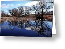 Roadside Pond I Greeting Card
