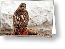Roadside Warrior Greeting Card