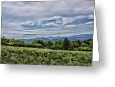 Roan Mountain 1 Greeting Card