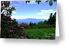 Roan Mountain Rhododendron Gardens Greeting Card