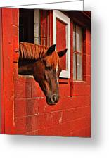 Roan Red Greeting Card