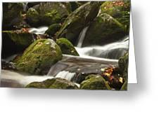 Roaring Fork Waterfall Greeting Card by Andrew Soundarajan