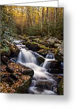 Roaring Fork Waterfall At Autumn Greeting Card by Andrew Soundarajan