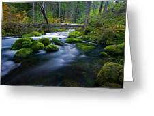 Roaring River Greeting Card