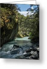 Rob Roy Stream New Zealand Greeting Card