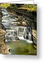 Robert H. Treman State Park Gorge Upper Falls Greeting Card