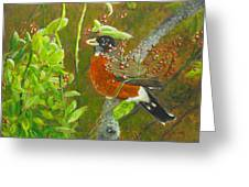 Robin In The Serviceberry Bush Greeting Card