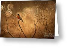 Robin Greeting Card by Lois Bryan