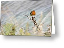 Robin Resting Greeting Card