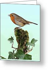 Robin Singing On Ivy-covered Stump Greeting Card