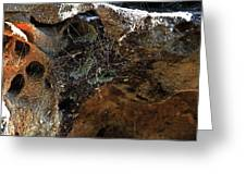 Rock Abstract With A Web Greeting Card