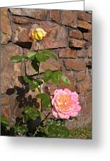Rock And Rose Greeting Card