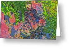 Rock And Shrub Abstract Bright Greeting Card