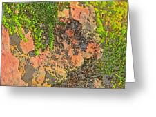 Rock And Shrub Abstract I  Greeting Card