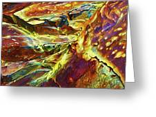 Rock Art 27 Greeting Card by ABeautifulSky Photography