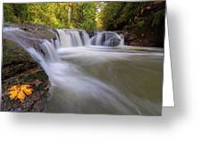 Rock Creek In Happy Valley Oregon Greeting Card