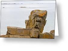 Rock Face Greeting Card