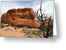 Rock Fin -- Arches National Park Greeting Card