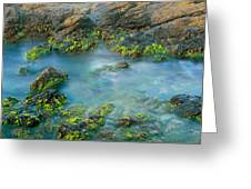 Rock Formations In The Sea, Bird Rock Greeting Card