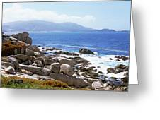 Rock Formations On The Coast, 17-mile Greeting Card