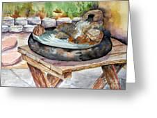 Rock Fountain Greeting Card