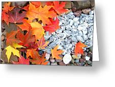 Rock Garden Autumn Leaves Greeting Card