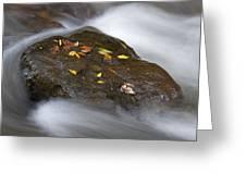Rock In Water Greeting Card