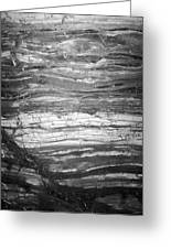 Rock Lines B W Greeting Card
