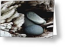 Rock Nest Greeting Card