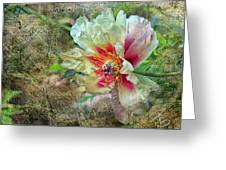Rock Peony Greeting Card