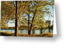 Rock River In October Greeting Card