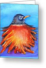 Rockin Robin Greeting Card