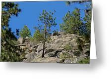 Rockin' Tree Greeting Card