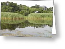 Rockport Reeds And Reflections Greeting Card