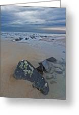 Rocks And Barnacles, Plum Island Greeting Card