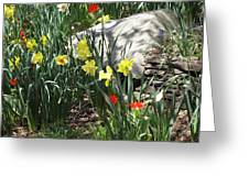 Rocks And Flowers Greeting Card